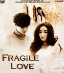 fragile-love-jongchansshi-storyline
