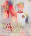 never-expressed-love-vi-storyline