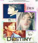 destiny-suyoung-kim-storyline