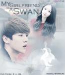 my-girlfriend-is-a-swan-doublej-storyline