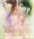 really-i-didnt-know-choi-soo-joon-storyline